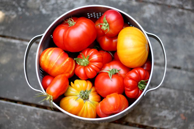 Big-Batch Summer Tomato Sauce Recipes — Dishmaps