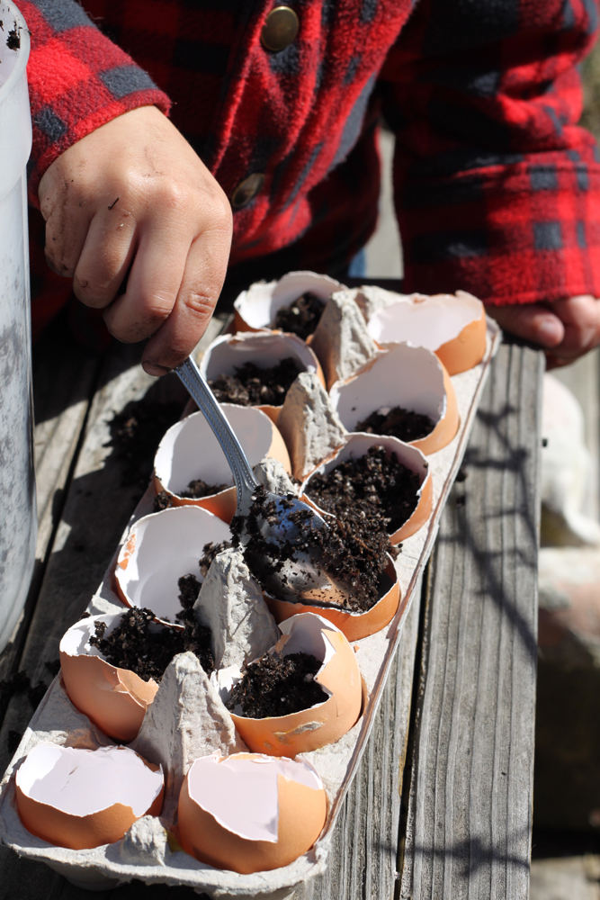 Sowing-seeds-with-kids