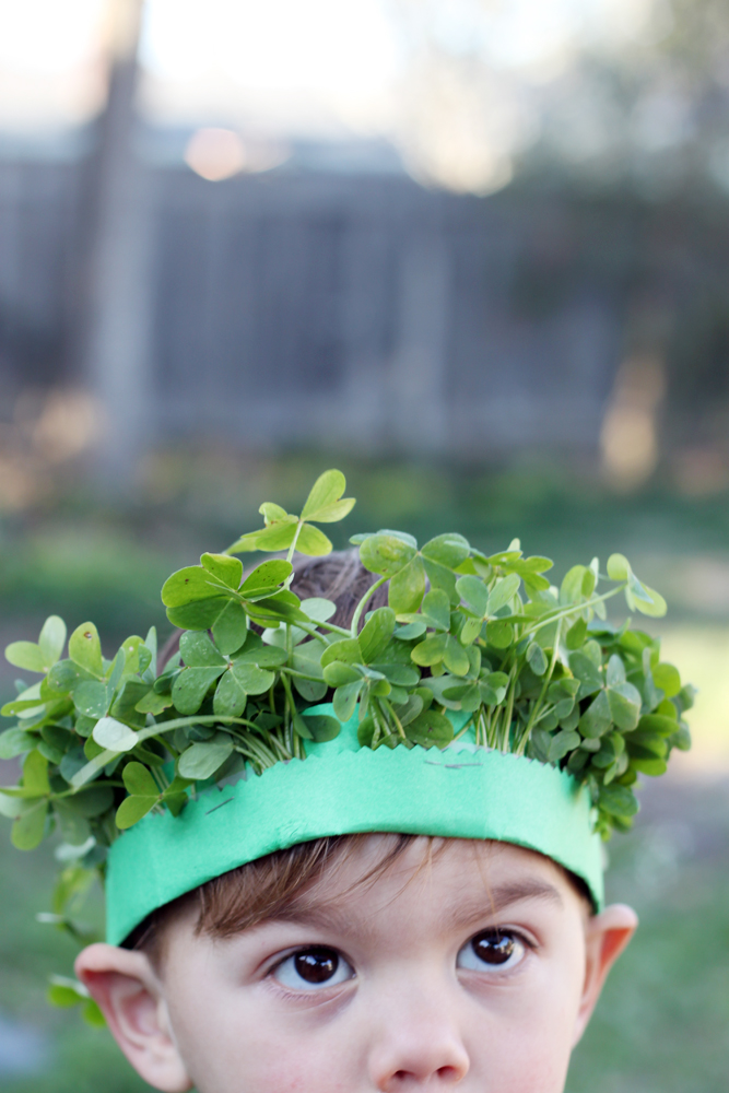 Diy shamrock crown