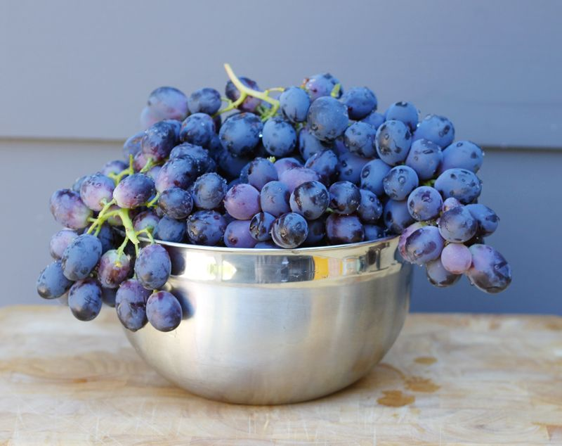 Bowl full of grapes