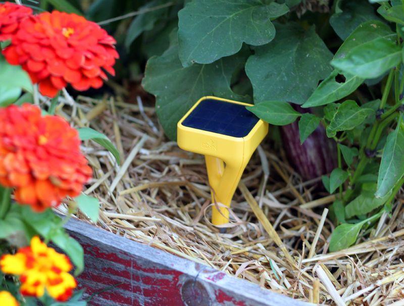 Edyn Garden Monitor