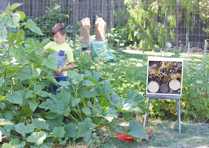 Invite kids into the garden
