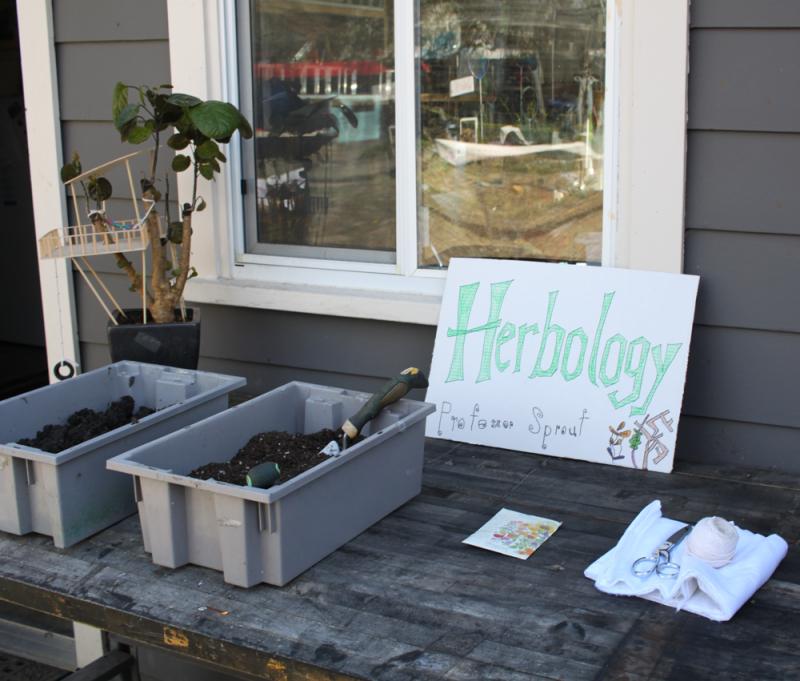 Diy harry potter party-herbology