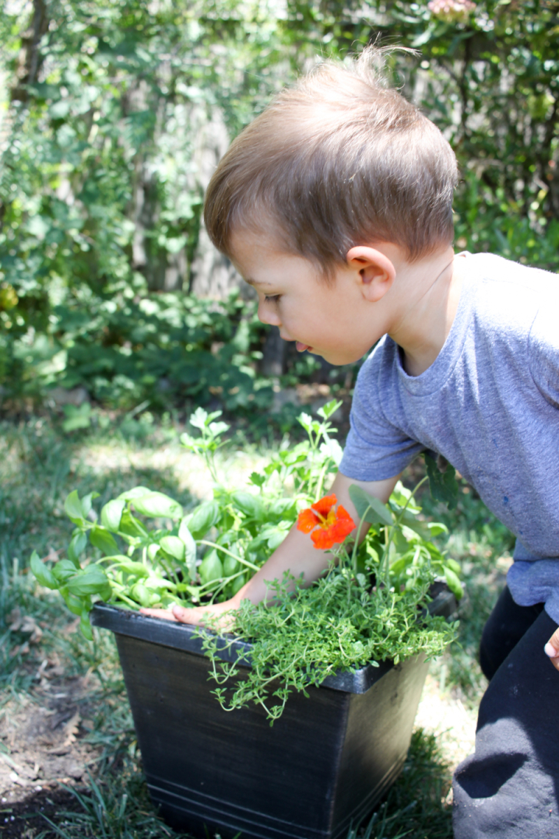 Kid gardening project