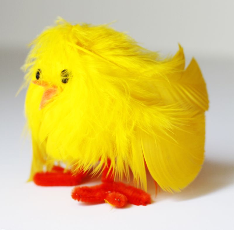 Make a feathery chick