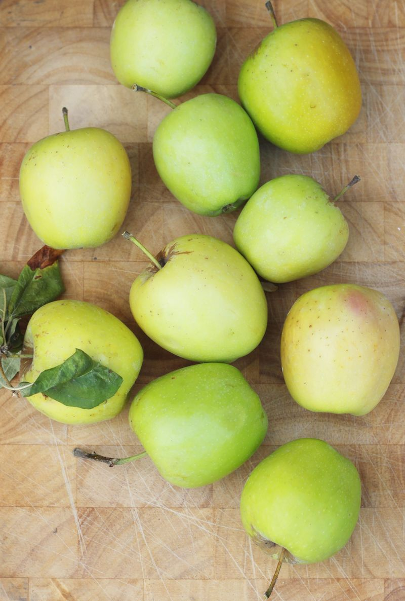 Backyard apples