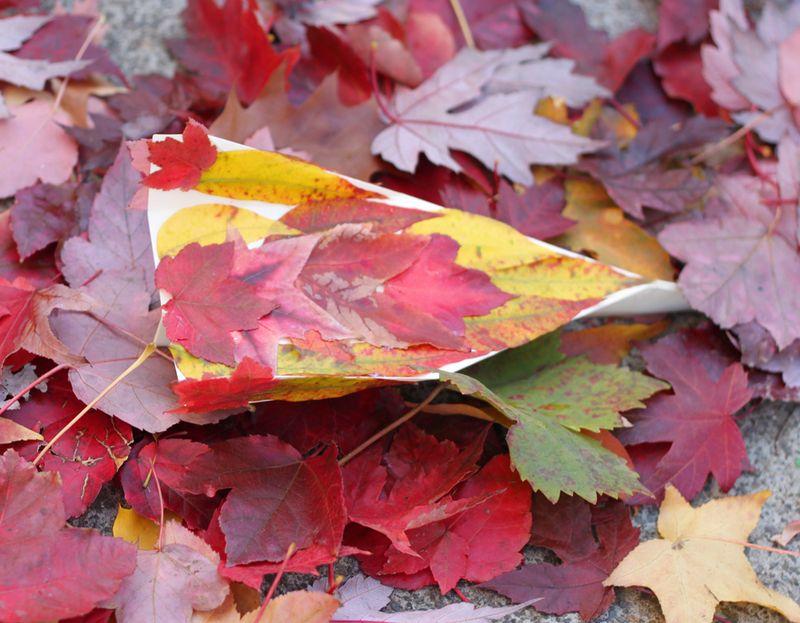 Fall kid craft