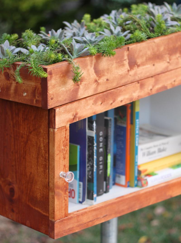 Orginal_Carla-Wiking_little-free-library-beauty