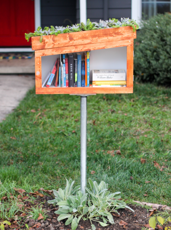 Orginal_Carla-Wiking_little-free-library-beauty-1